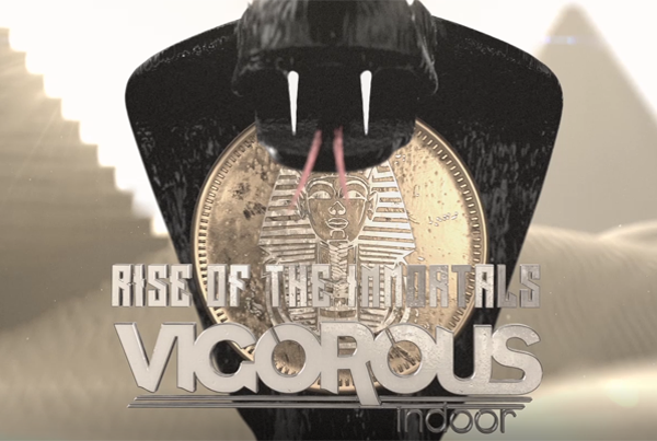 VIGOROUS INDOOR 2017